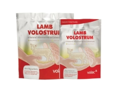 50g-volostrum-lamb-colostrum-single-sachet