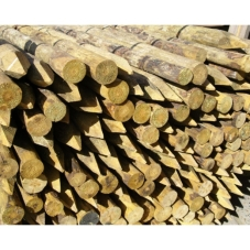 8ft-23-peeled-round-tree-stake-pointed-uc4-15y