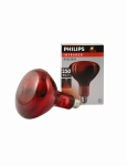 Infra Red Bulb 250w (Ruby)