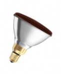 Infra Red PAR 175w Bulb (Ruby)