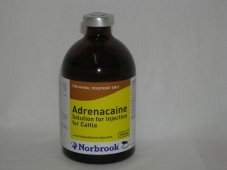 local-anaesthetic-injection-adrenacaine-pomvps-100ml