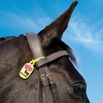 NAF Citronella Fly Tags - Equine