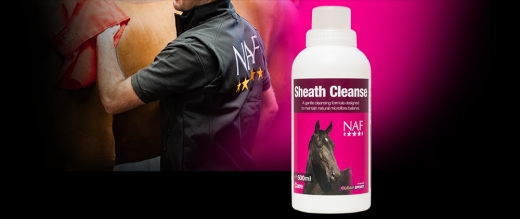 naf-sheath-cleaner-500ml