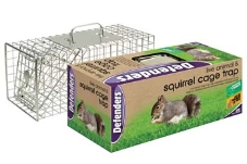 ratsquirrel-cage-trap